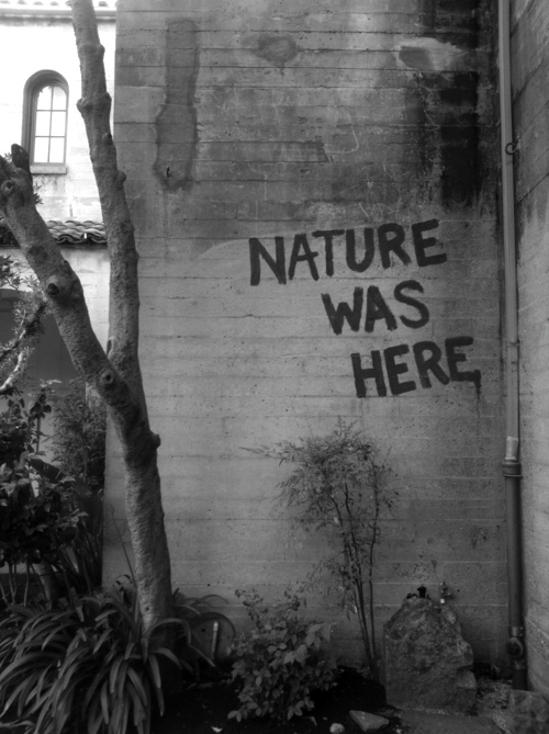 nature-was-here
